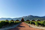 Винодельня Bodegas Ysios в Италии