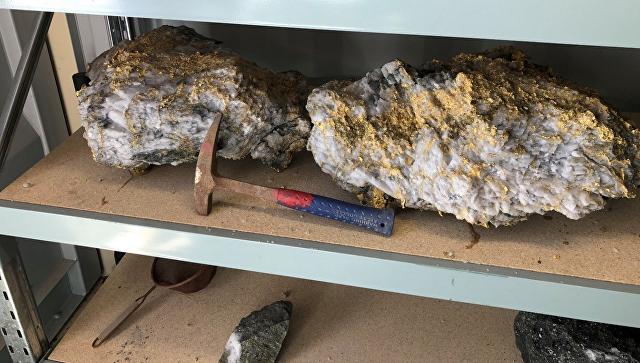 Крупный золотой самородок на шахте Beta Hunt в Западной Австралии. 9 сентября 2018