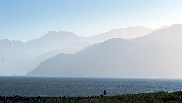 Новая Зеландия, на побережье. Архивное фото