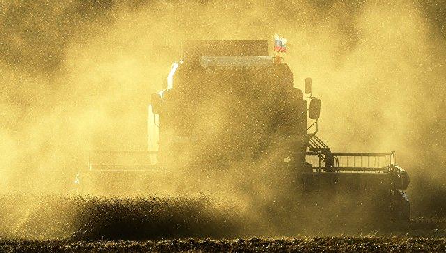 В Нижегородской области производство пищевой продукции выросло на 3,3 млрд