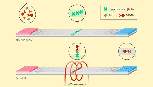 Российские химики создали сверхчувствительный детектор ядов