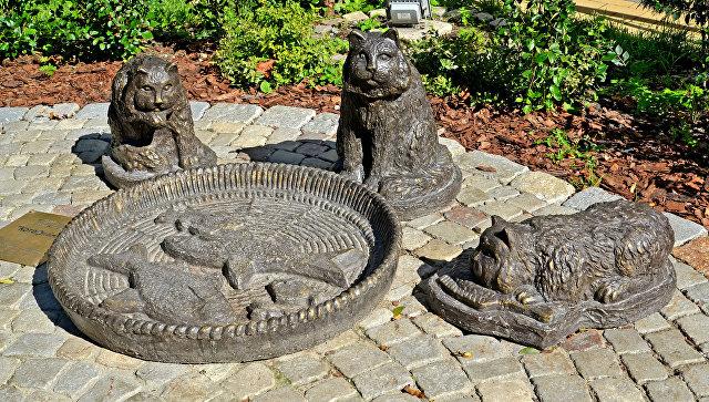 Cкульптура обедающих уличных котов в Зеленоградске. Архивное фото