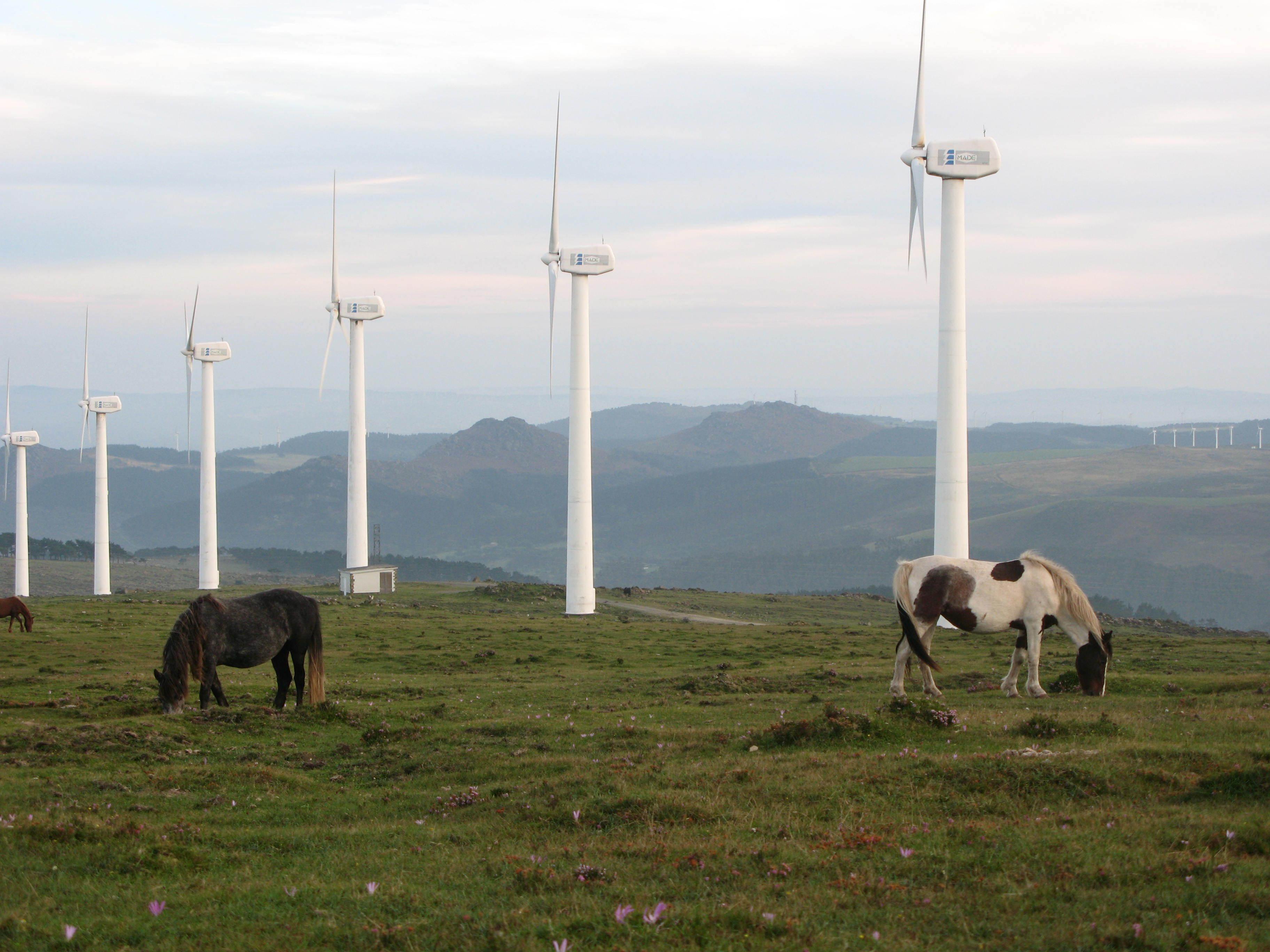 Девять стран ЕС объединят в одну сеть ветряные фермы в Северном море