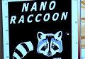 Российские ученые с помощью наномикроскопа могут видеть наноенота