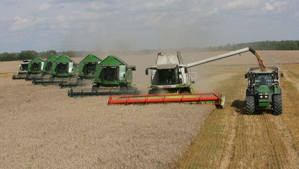 Уборка пшеницы на полях сельхозпредприятия Долгов и компания. Архив