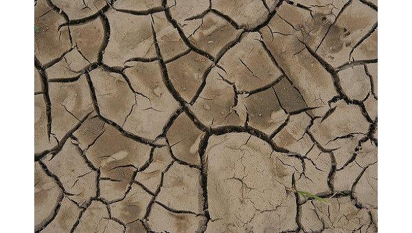 Засуха: причины и методы борьбы. Справка
