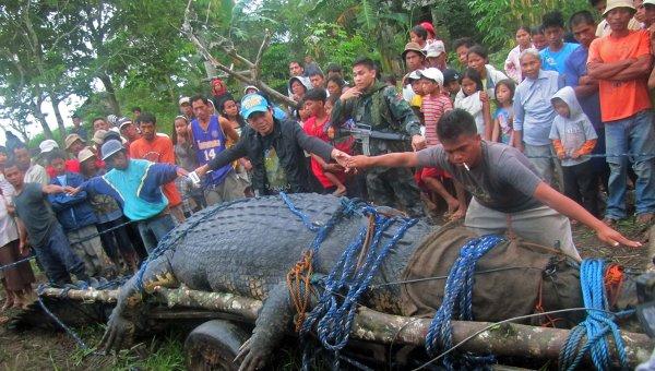 фото самый большой крокодил