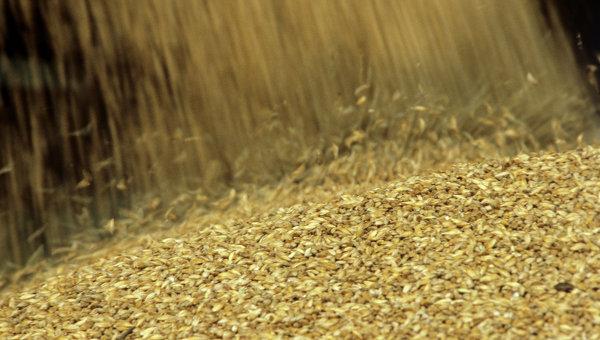 Урожай зерна, Архивное фото