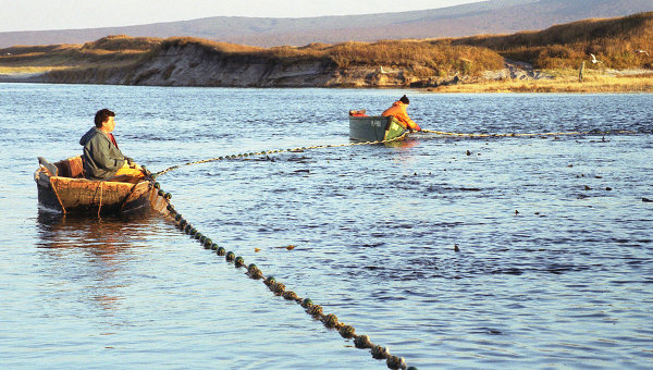 Росрыболовство предлагает ограничить использование рыболовных сетей