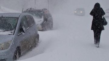 Снежный циклон. Архивное фото