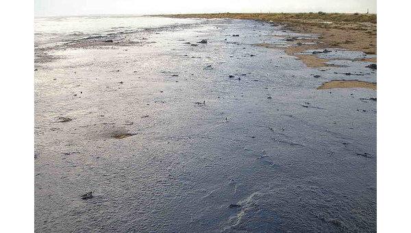 Нефтяное пятно появилось вакватории морского заповедника вПриморье