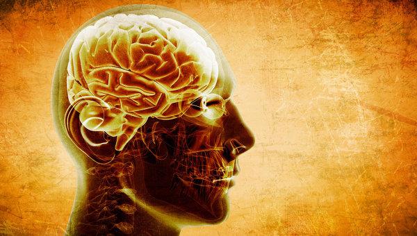 Человеческий мозг. Архивное фото