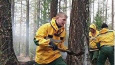 Сотрудники Авиалесоохраны (подразделение Рослесхоза) тушат возгорания леса