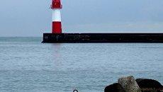 Фотолента Черное море