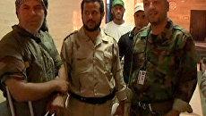 Раскол в семье Каддафи – один из сыновей полковника готов сдаться