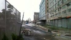 После урагана бруклинцы играли в баскетбол среди поваленных деревьев
