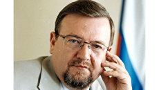 Заместитель директора Института этнологии и антропологии РАН Владимир Зорин