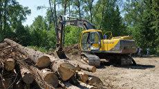Вырубка Химкинского леса в районе аэропорта Шереметьево