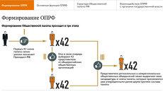 Общественная палата Российской Федерации: функции, структура