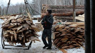 Рабочий грузит обрезки древесины, архивное фото
