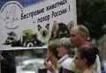Акция в защиту животных Россия без жестокости!