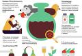 ГМО: что это такое и стоит ли бояться