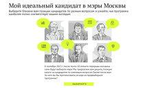 Мой идеальный кандидат в мэры Москвы