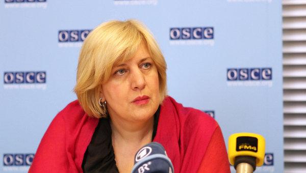 Представитель Организации по безопасности и сотрудничеству в Европе (ОБСЕ) о вопросам свободы СМИ Дунья Миятович. Архивное фото