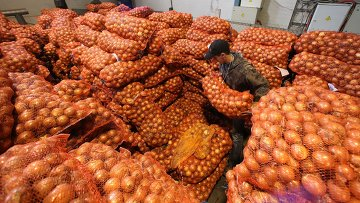 Овощи, архивное фото