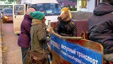 Конь - кандидат в мэры Новосибирска