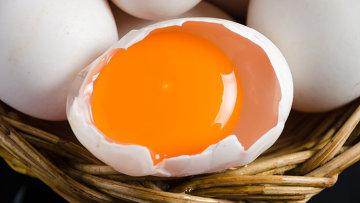 Яйцо, архивное фото