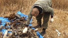 Сотни частей советского самолета найдены в Приморье, имя пилота неизвестно