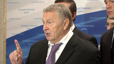 Депутаты Госдумы назвали тех, кого амнистируют к 20-летию Конституции