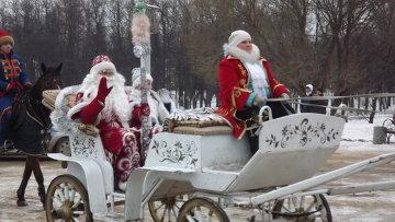 Лошада Деда Мороза в Иваново, фото с места события