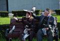 Пожилые люди кормят голубей
