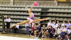 Чемпионат ПФО по гимнастике в Самаре, фото с места события