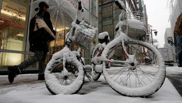 Последствие сильного снегопада в Токио. Фото с места события