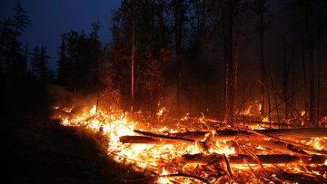 Тушение лесных пожаров в Красноярском крае. Архивное фото