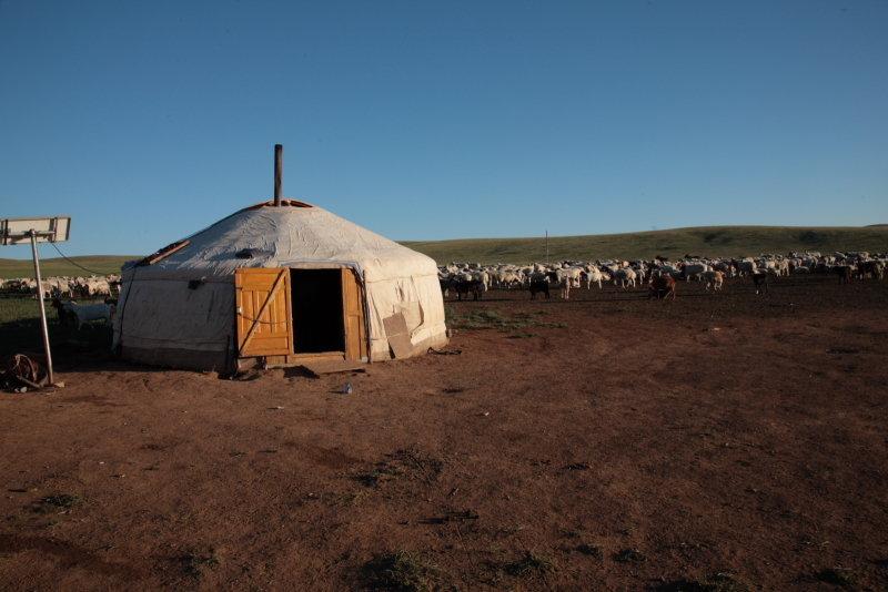 Дом в Монголии, пустыня Гоби
