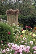Дачный декор: 7 идей, как украсить садовый участок своими руками