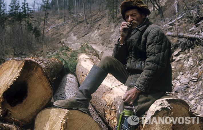 Старый таежник Василий Соболев