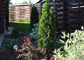 Сад для чайников: как создать на даче красивый ландшафт без особых усилий